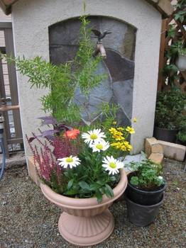 2010秋の寄せ植え.jpg