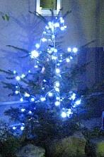 クリスマスイルミ モミの木.jpg